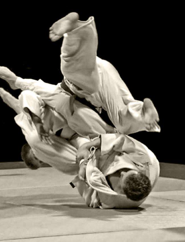 Jiu-Jitsu-Brésilien